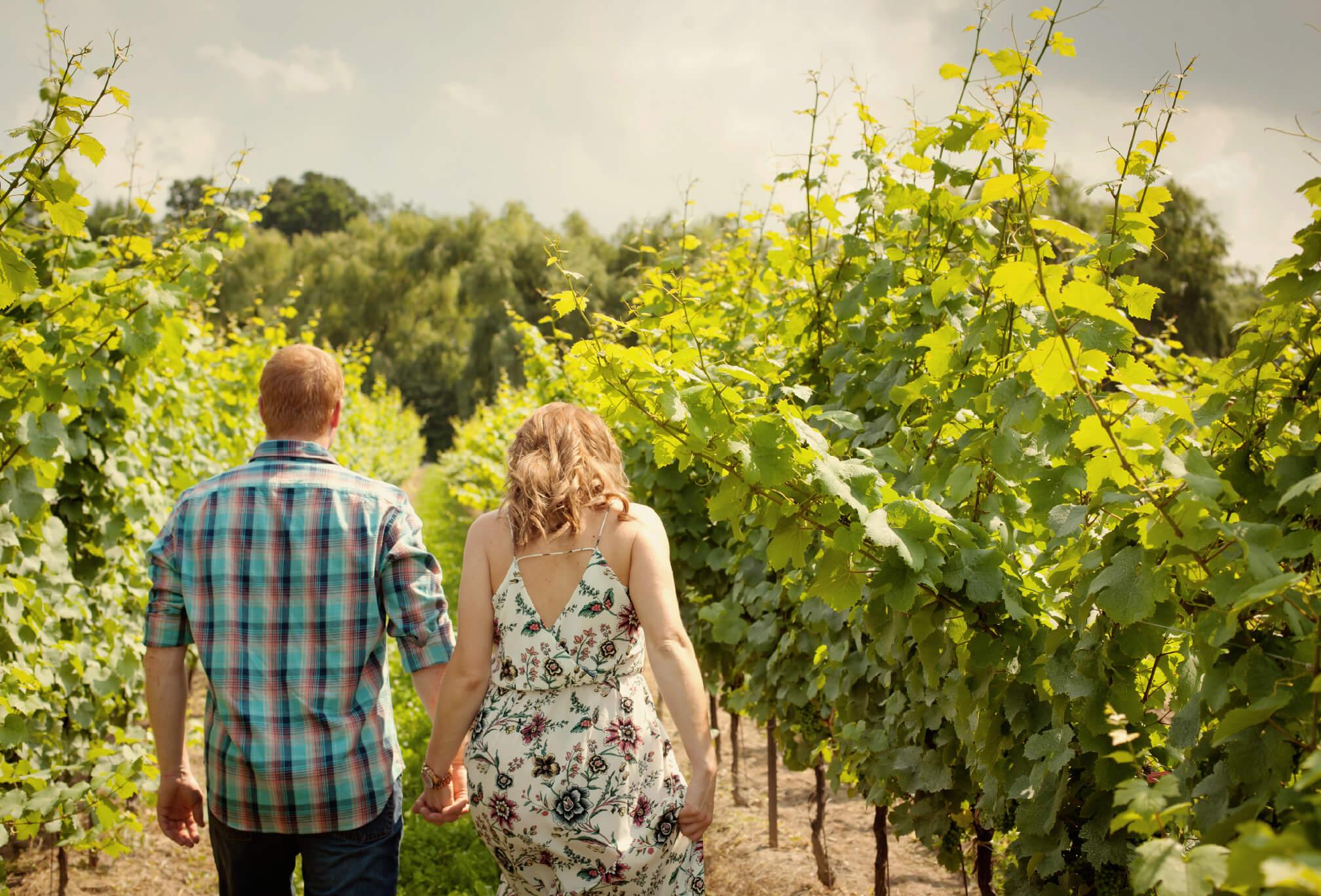 winery engagement photos vineland