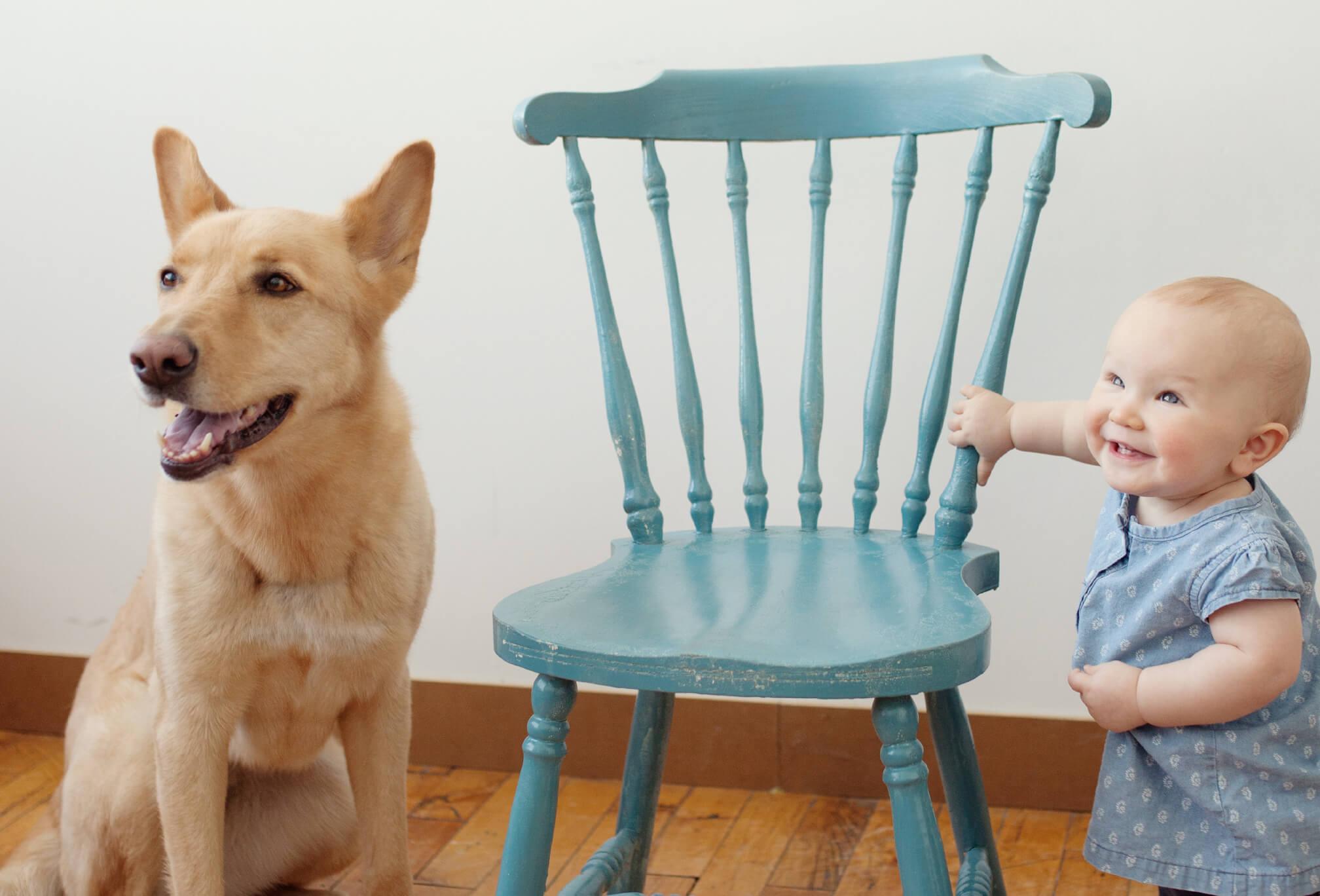baby and dog photography toronto