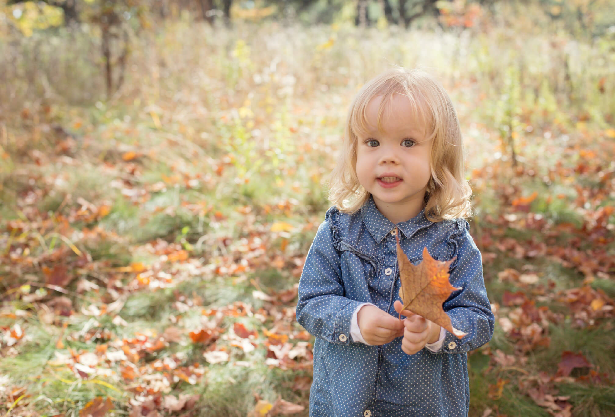 fall toddler photoshoot high park