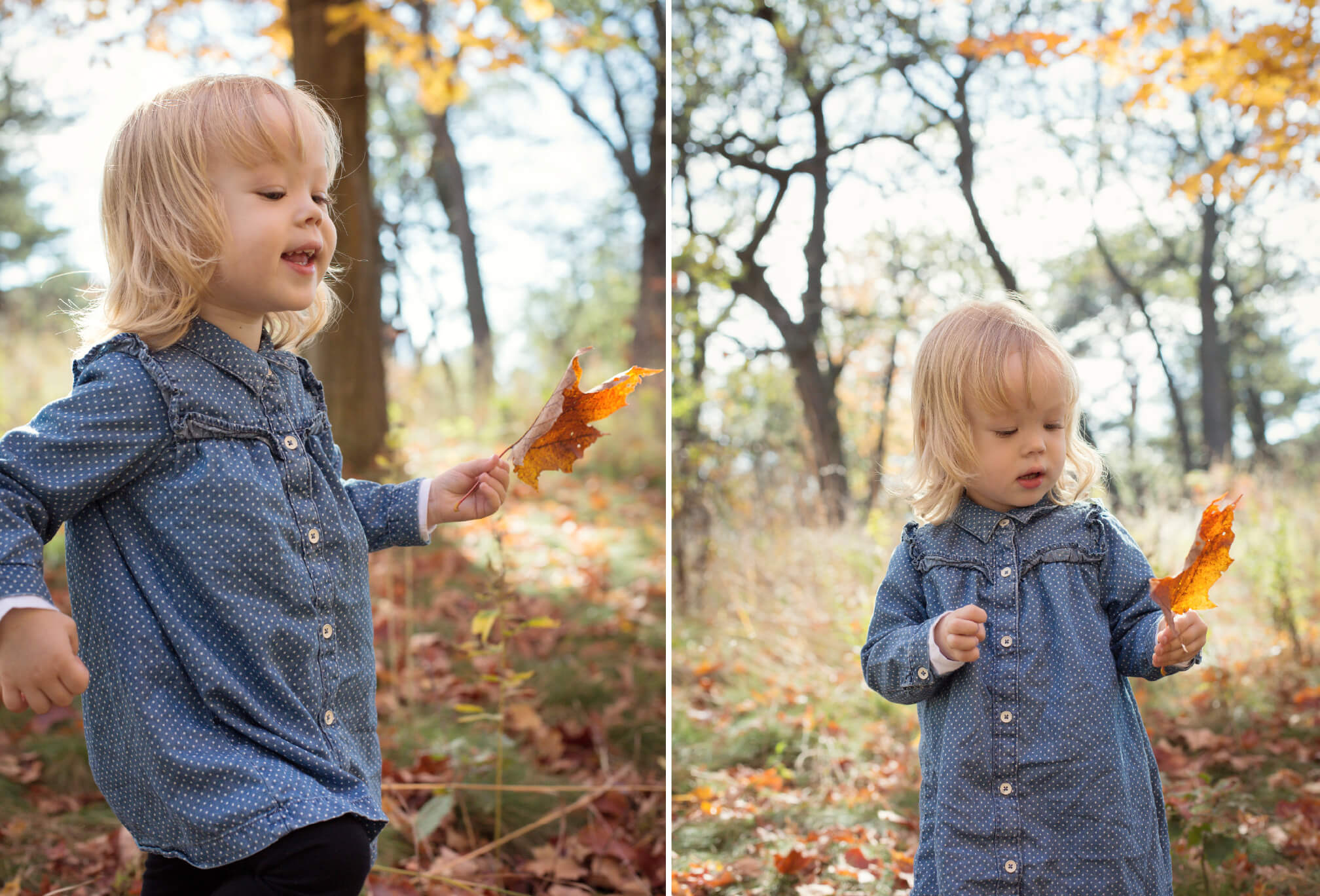 fall family photoshoot with toddler