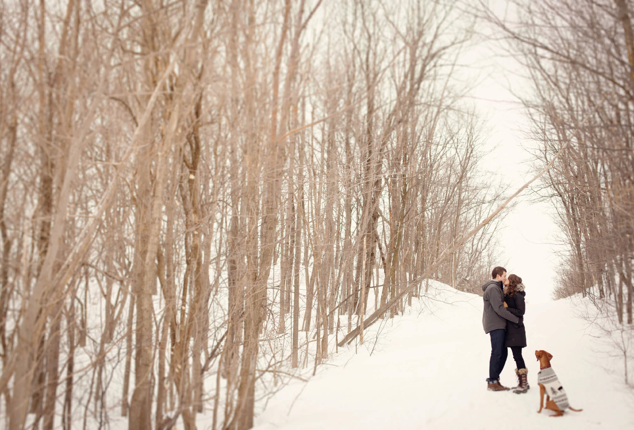 winter engagement session with dog