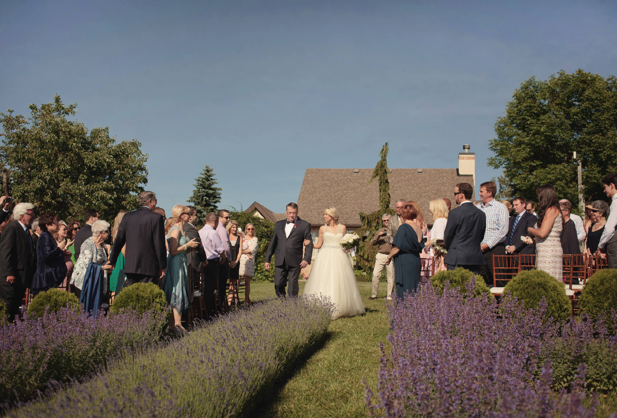 lavender field ceremony