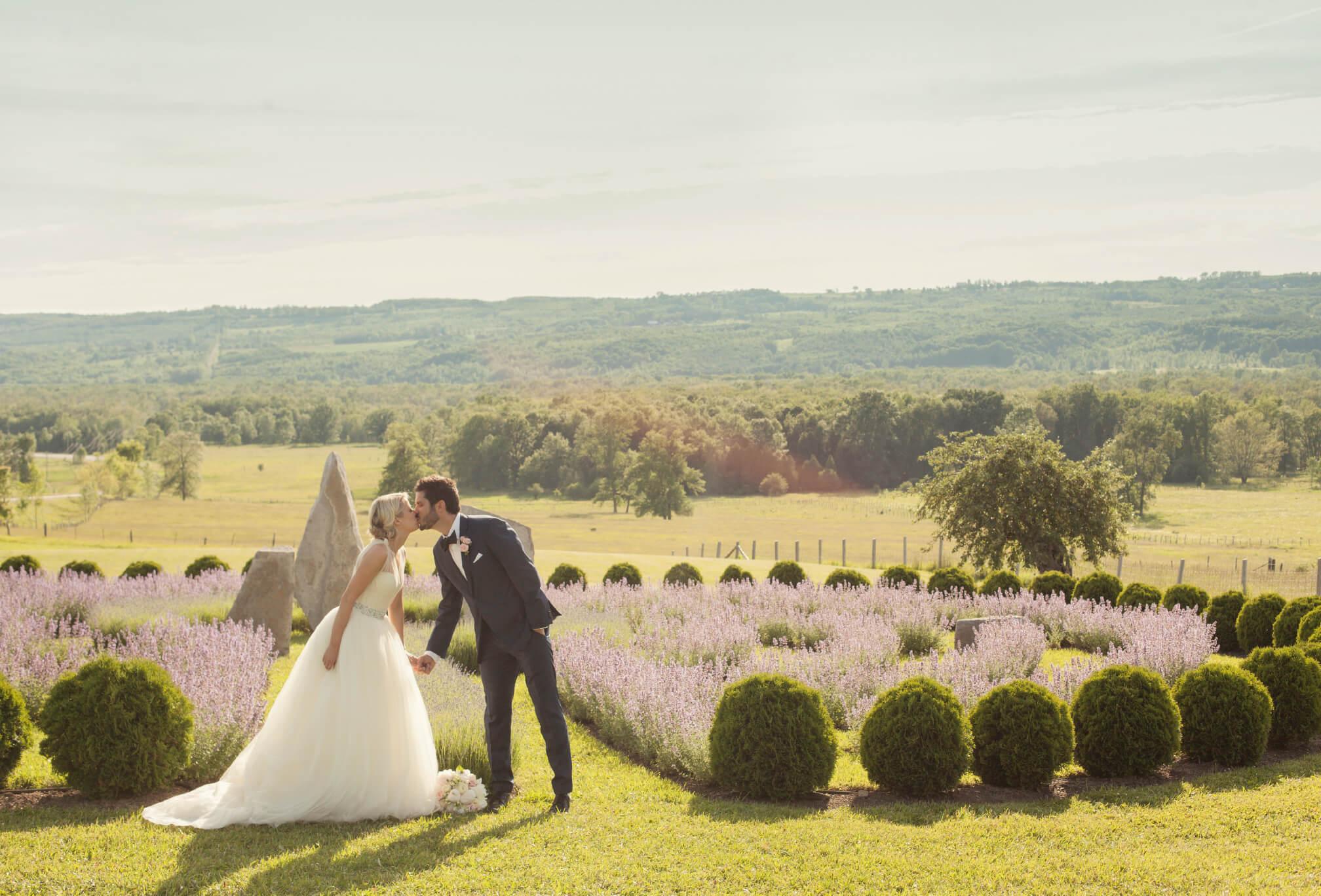 lavender wedding ontario