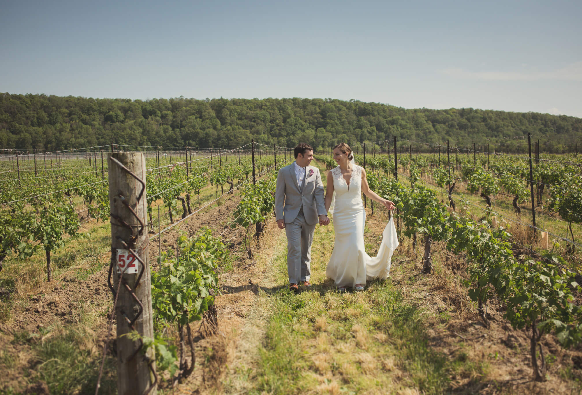 bride and groom vineyard photography