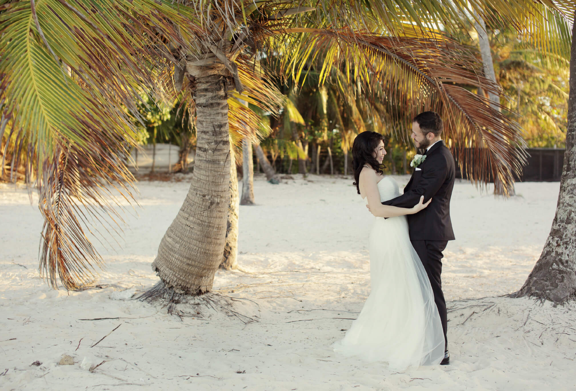 bride and groom under palm tree