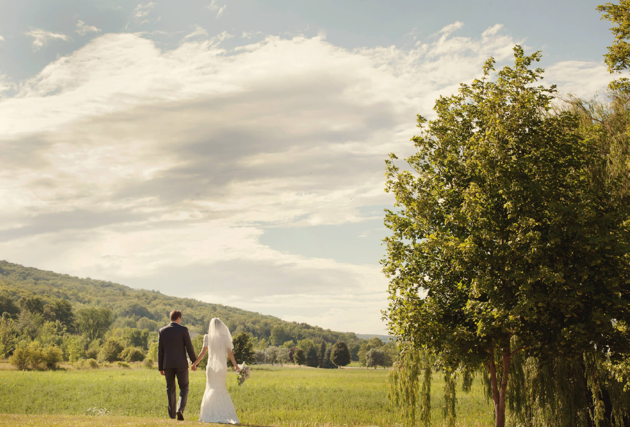 epic farm wedding blue mountains