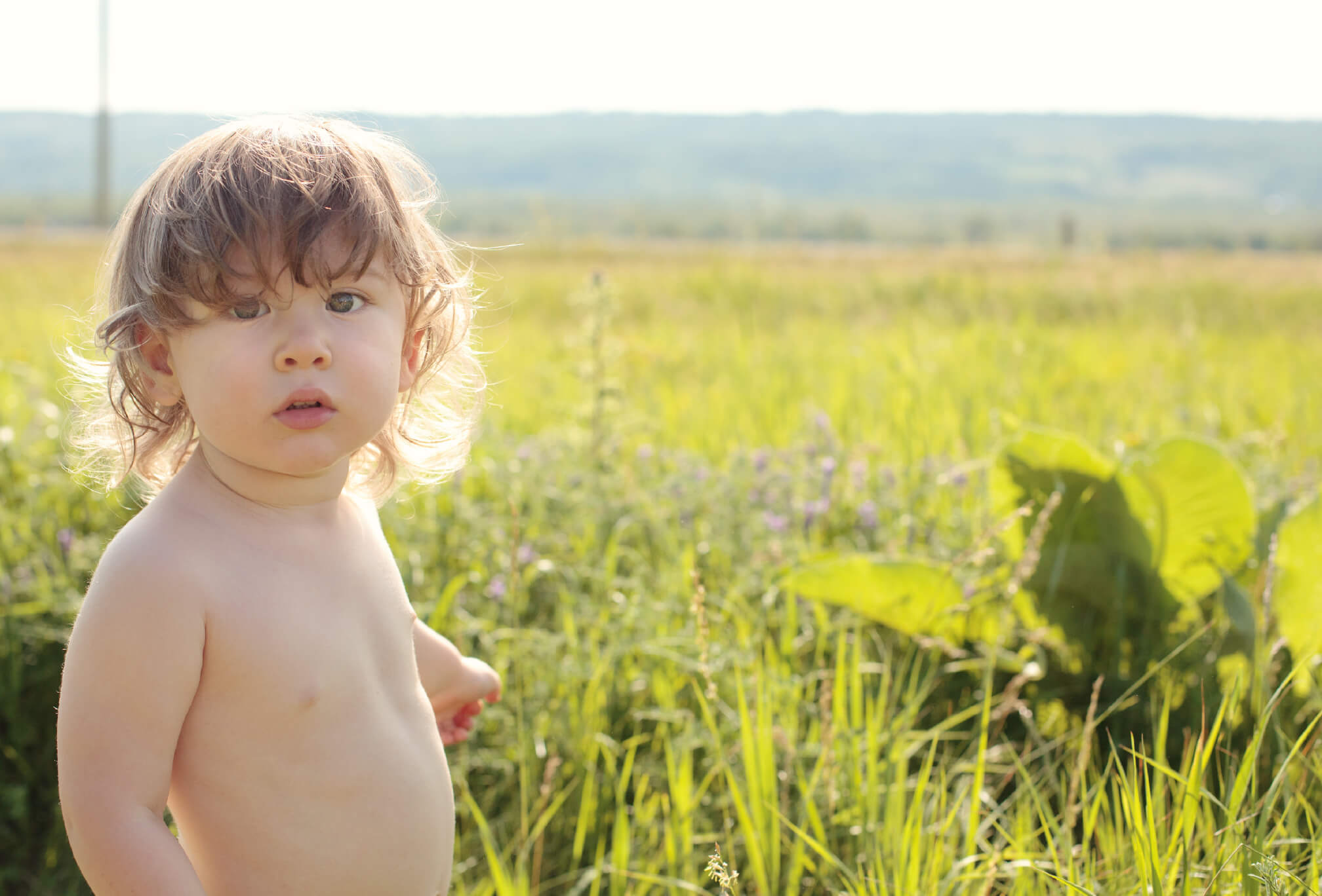 toddler photography wildflower field