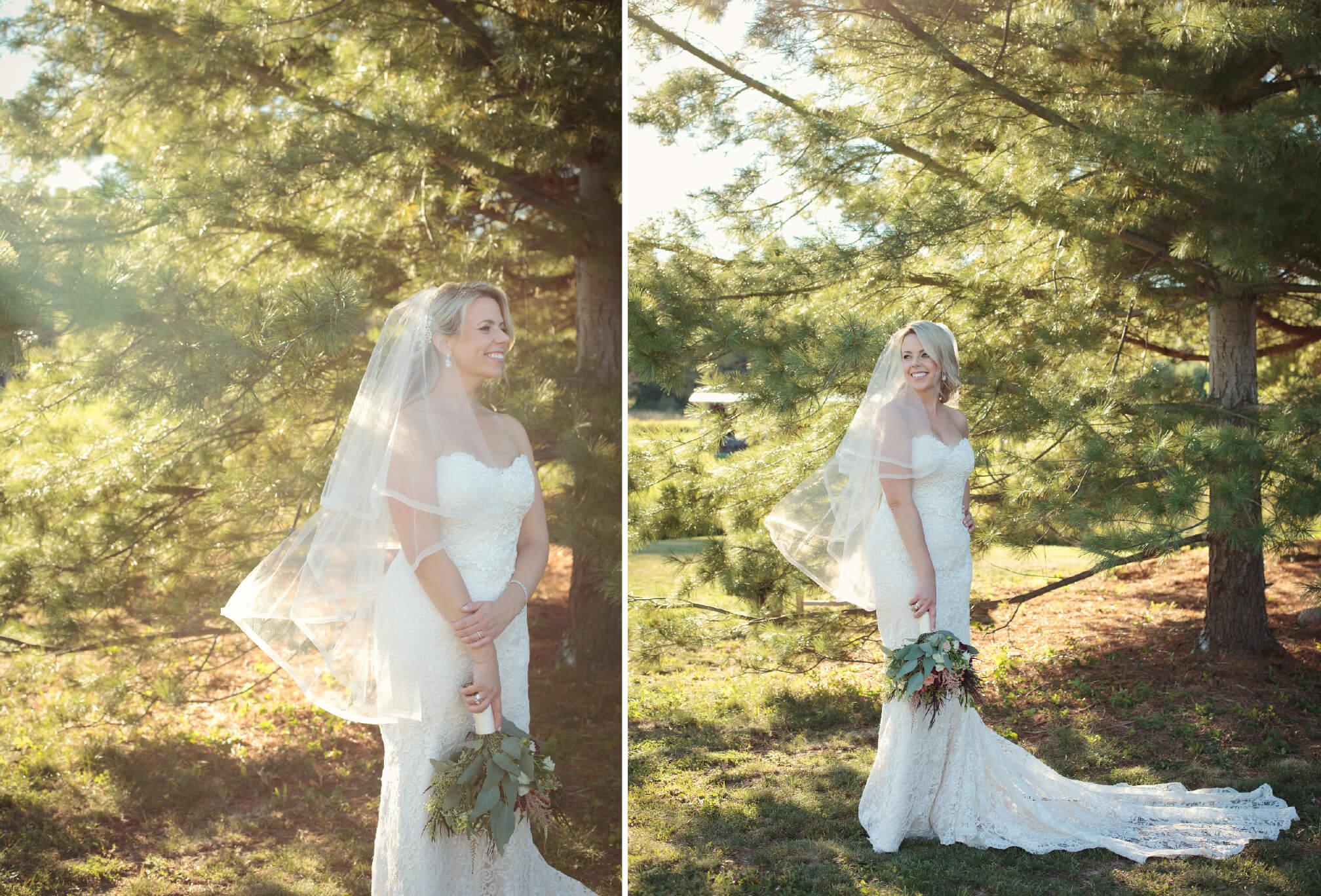 bride light through pines in muskoka