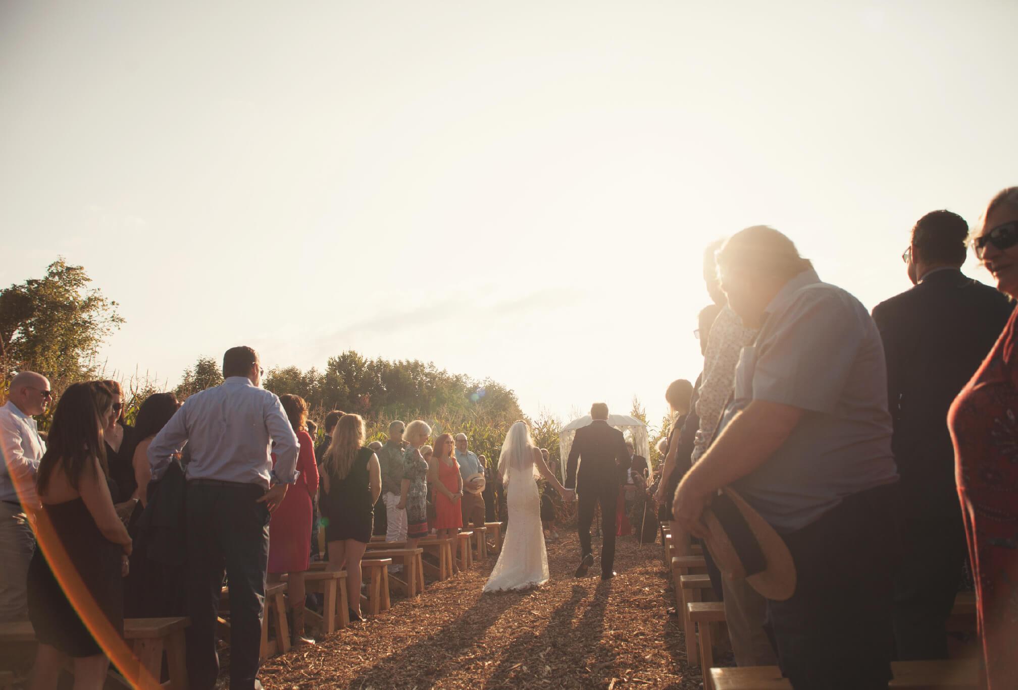 cornfield ceremony ontario