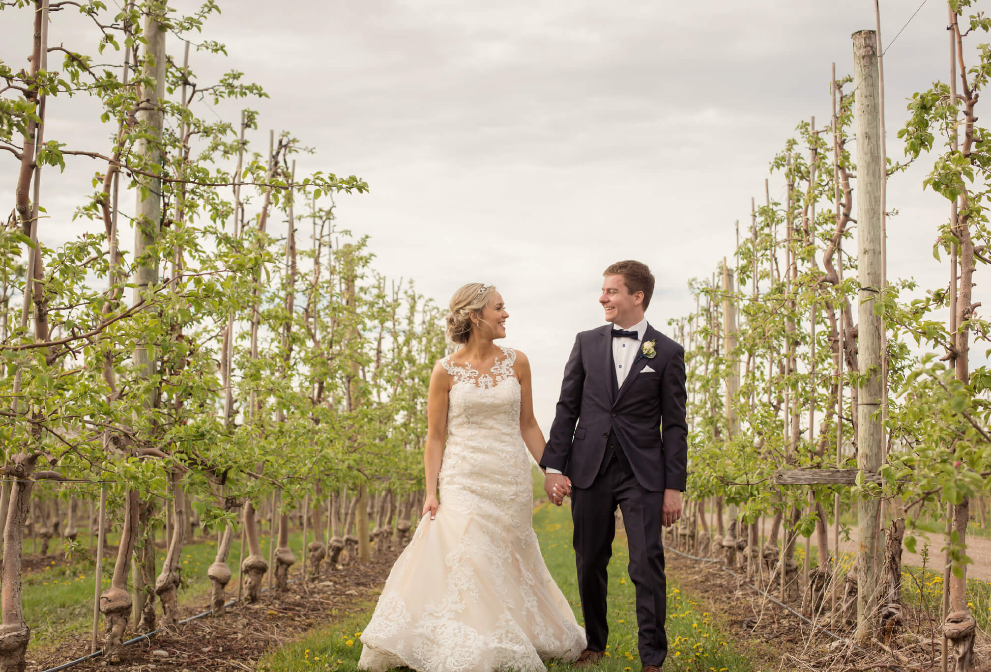 apple orchard wedding photography ontario